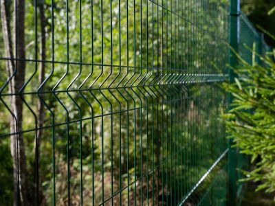 This image shows a green wire fence used in an outdoor area.